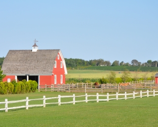 A red barn sits in a green field on a sunny day, with ponies grazing out front.