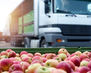 Containers of apples wait to be loaded onto a truck.