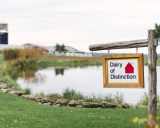 "An image of a New York State dairy with a sign that says ""Dairy of Distinction"" in the foreground."