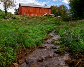A lush green farm scene with a red barn in the background.