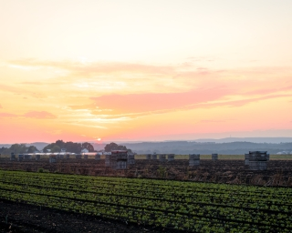 A sunset over farmland in New York.