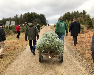 A group of people pulling a cut Christmas tree up a hill.