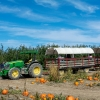 A hayride through a pumpkin patch in New York State.