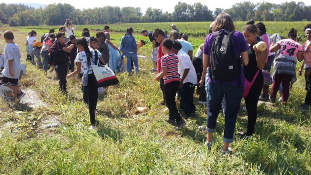 A group of students prepares to harvest squash.