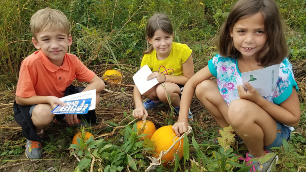 Three students with pumpkins in a field.